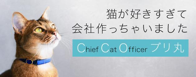 猫が好きすぎて会社作っちゃいました~CCOブリ丸~